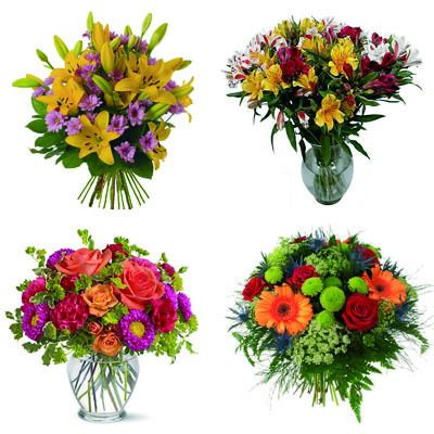 Zamour 4 bouquets
